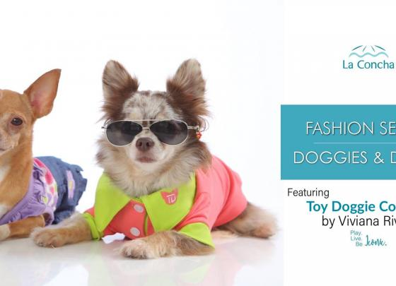 Fashion Series: Dogs & Divas