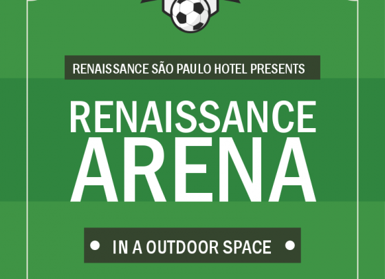 Renaissance Arena