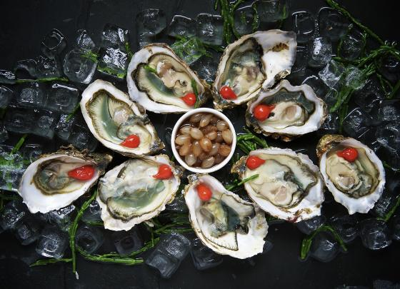 Dutch Fish Tasting