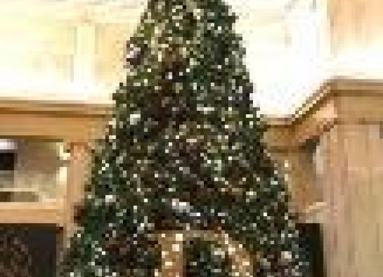 Christmas tree at the bank