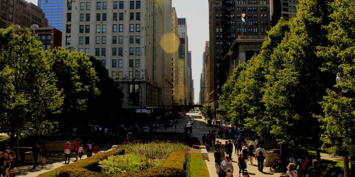 Chicago OHare  - navigator profile image